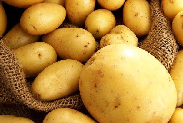 Полезные рецепты с картофелем