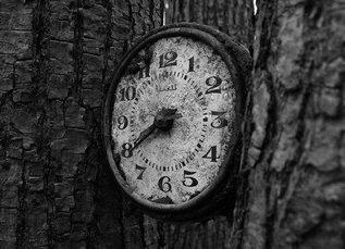 А время — оно не лечит